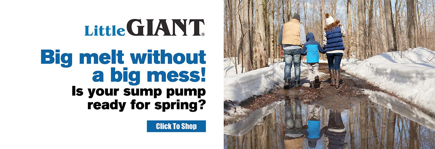 Little Giant Sump Pumps