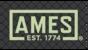 Ames TrueTemper Logo
