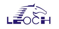 Leoch Battery Logo