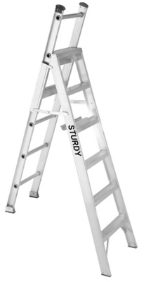 Multiway Ladders