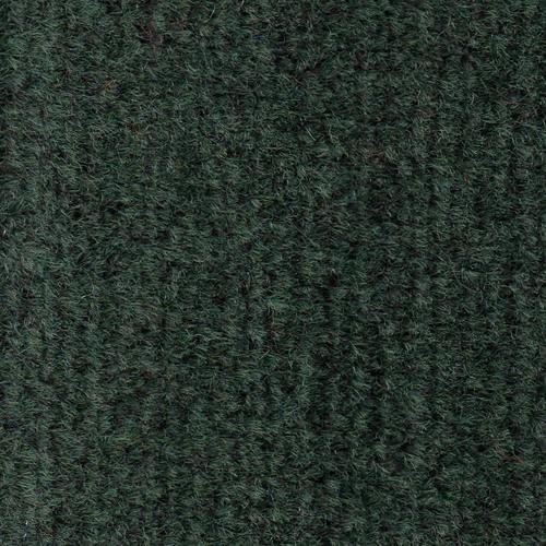 PTF500305